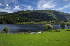 Groene gras bosmeer en bergen met blauw hemelplatteland Royalty-vrije Stock Afbeelding
