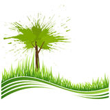 Groene gras en boom. De achtergrond van Eco Stock Afbeeldingen