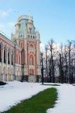 Groene gras en sneeuw De Russische winter Royalty-vrije Stock Afbeeldingen