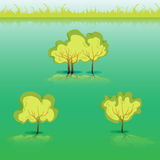 Groene Gras en struiken en boom Royalty-vrije Stock Foto