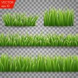 Groene gras seemless die grenzen en kruidenelementen op Transparante achtergrond worden geïsoleerd Vector illustratie Stock Afbeelding