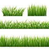 Groene gras seemless die grenzen en kruidenelementen op witte achtergrond worden geïsoleerd Vector illustratie Royalty-vrije Stock Foto's