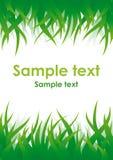 Groene gras vectorachtergrond Royalty-vrije Stock Foto's