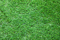 Groene grasachtergrond Stock Afbeeldingen