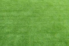 Groene grasachtergrond royalty-vrije stock afbeelding