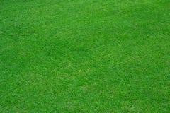 Groene grasachtergrond van voetbalgebied stock fotografie
