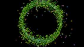 GROENE GRAScirkel stock video