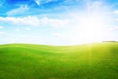 Groene grasheuvels onder middagzon in blauwe hemel. Stock Foto's