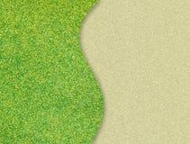Groene graskromme op zand Stock Afbeelding