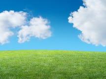 Groene grasrijke heuvel stock foto