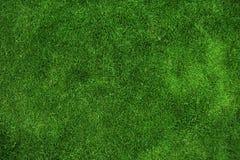 Groene grastextuur stock foto's