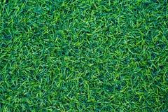 Groene grastextuur als achtergrond Stock Afbeelding