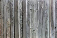 Groene Grey Tinted Wood-omheinings unieke korrel als achtergrond Royalty-vrije Stock Fotografie