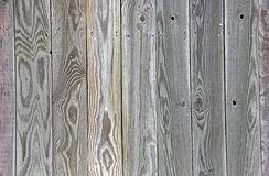 Groene Grey Tinted Wood-omheiningsraad als achtergrond uniq Royalty-vrije Stock Afbeelding