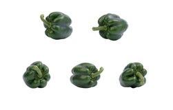 Groene groene paprika. Stock Afbeelding