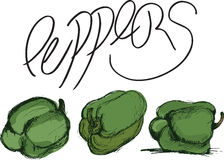 Groene Groene paprika Royalty-vrije Stock Foto's