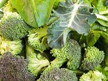 Groene groenten Royalty-vrije Stock Foto's