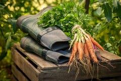 Groene groenten en en oud groen rubber goed royalty-vrije stock fotografie