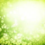 Groene grungeachtergrond van de lente of van de zomer Royalty-vrije Stock Foto