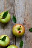 Groene heerlijke appel Stock Afbeeldingen