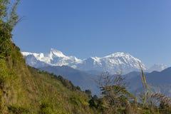 Groene helling van een heuvel tegen de achtergrond van een sneeuwberg van Annapurna onder een duidelijke blauwe hemel royalty-vrije stock afbeeldingen