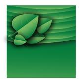 Groene het documentlay-out van het bladerenmalplaatje Royalty-vrije Stock Afbeelding