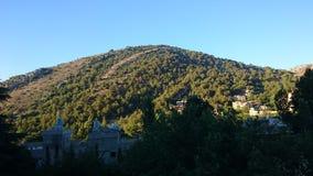 Groene het dorp van de boomhemel stock afbeelding