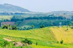 Groene heuvel en blauwe hemel Stock Afbeeldingen