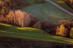 Groene heuvel in vallei stock afbeeldingen