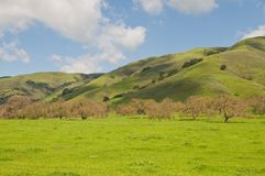 Groene heuvels Royalty-vrije Stock Afbeeldingen