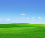 Groene Heuvels Stock Afbeelding