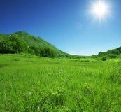 Groene heuvels Stock Foto