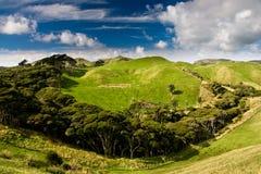 Groene heuvels royalty-vrije stock foto's