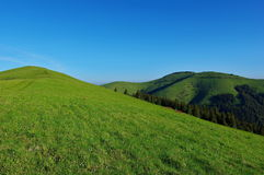 Groene heuvels en blauwe hemel stock foto