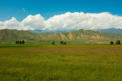 Groene Heuvels in Kyrgyzstan Royalty-vrije Stock Foto's