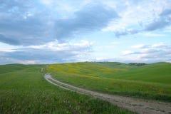 Groene heuvels met cipressen en groene weiden in Val D ?Orcia, Toscani?, Itali? royalty-vrije stock foto's