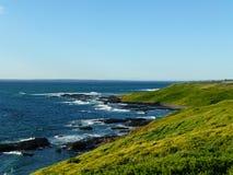 Groene Heuvelsoceaan stock foto