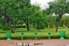 Groene houten bank in de tuin Stock Fotografie