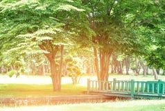 Groene houten brug rechtstreeks vooruit schaduwrijke vrede Royalty-vrije Stock Foto's