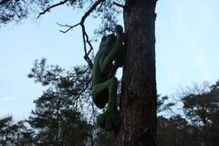 Groene houten kikker op een boom Stock Afbeelding