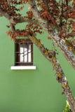 Groene huisvoorzijde Stock Fotografie