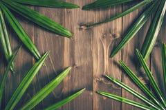Groene Ieaf-achtergrond rond oud hout met ruimte, gestemde Wijnoogst Royalty-vrije Stock Foto