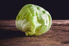 Groene ijsbergsla Royalty-vrije Stock Foto's