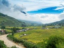groene ingediende rijst en berg Royalty-vrije Stock Foto's