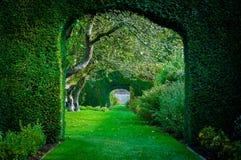 Groene installatiebogen in Engelse plattelandstuin Stock Fotografie