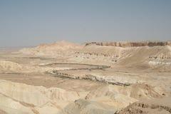 Groene installaties die in Negev-rivierbed groeien Royalty-vrije Stock Foto