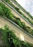 Groene installaties op balkons Stock Foto's