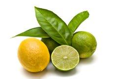 Groene kalk en citroen Royalty-vrije Stock Foto
