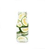 Groene kalkplakken in een fles Stock Afbeeldingen