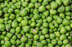 Groene Kappertjes Royalty-vrije Stock Fotografie